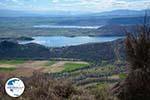 The Lakes Zazari and Chimaditis near Nimfeo in Florina   Macedonia Photo 6 - Photo GreeceGuide.co.uk