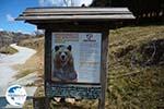Arktouros protection of wild animals   Florina   Macedonia - Photo GreeceGuide.co.uk