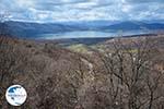 The Lakes of Prespes | Florina Macedonia | Greece Photo 2 - Photo GreeceGuide.co.uk