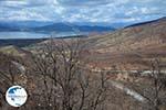 The Lakes of Prespes | Florina Macedonia | Greece Photo 3 - Photo GreeceGuide.co.uk