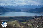 The Lakes of Prespes | Florina Macedonia | Greece Photo 5 - Photo GreeceGuide.co.uk