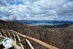 The Lakes of Prespes   Florina Macedonia   Greece Photo 8 - Photo GreeceGuide.co.uk