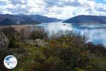The Lakes of Prespes | Florina Macedonia | Greece Photo 12 - Photo GreeceGuide.co.uk