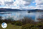 The Lakes of Prespes   Florina Macedonia   Greece Photo 16 - Photo GreeceGuide.co.uk