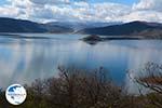 The Lakes of Prespes | Florina Macedonia | Greece Photo 17 - Photo GreeceGuide.co.uk