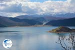 The Lakes of Prespes | Florina Macedonia | Greece Photo 18 - Photo GreeceGuide.co.uk