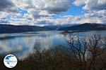 The Lakes of Prespes | Florina Macedonia | Greece Photo 20 - Photo GreeceGuide.co.uk