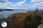 The Lakes of Prespes | Florina Macedonia | Greece Photo 21 - Photo GreeceGuide.co.uk