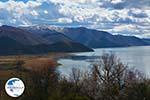 The Lakes of Prespes | Florina Macedonia | Greece Photo 34 - Photo GreeceGuide.co.uk