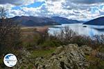 The Lakes of Prespes | Florina Macedonia | Greece Photo 35 - Photo GreeceGuide.co.uk
