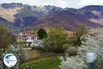 Village Laimos near Prespes | Florina Macedonia | Photo 1 - Photo GreeceGuide.co.uk