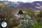 Village Laimos near Prespes   Florina Macedonia   Photo 2 - Photo GreeceGuide.co.uk