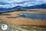 Near the Lakes of Prespes | Florina Macedonia | Greece Photo 42 - Photo GreeceGuide.co.uk