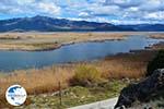 Near the Lakes of Prespes | Florina Macedonia | Greece Photo 44 - Photo GreeceGuide.co.uk
