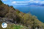 Near the Lakes of Prespes | Florina Macedonia | Greece Photo 45 - Photo GreeceGuide.co.uk