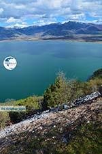 Near the Lakes of Prespes | Florina Macedonia | Greece Photo 48 - Photo GreeceGuide.co.uk