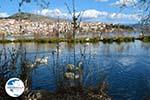 Kastoria | Macedonia Greece | Photo 33 - Photo GreeceGuide.co.uk