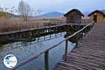 Dispilio Kastoria | Macedonia Greece | Photo 8 - Photo GreeceGuide.co.uk