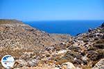 Zakros and Kato Zakros - Crete - Greece  15 - Photo GreeceGuide.co.uk