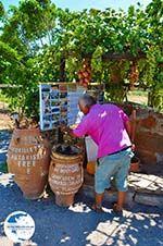 Zakros and Kato Zakros - Crete - Greece  63 - Photo GreeceGuide.co.uk