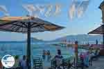 Agios Sostis Cameo Zakynthos - Ionian Islands -  Photo 8 - Photo GreeceGuide.co.uk