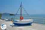 Agios Sostis Zakynthos - GreeceGuide.co.uk photo 23 - Photo