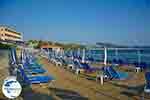 Argassi Zakynthos - Ionian Islands -  Photo 5 - Photo GreeceGuide.co.uk