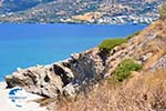 Golden beach | Marmari Euboea | Greece Photo 2 - Photo GreeceGuide.co.uk