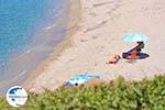Golden beach | Marmari Euboea | Greece Photo 7 - Photo GreeceGuide.co.uk