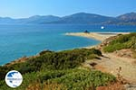 Golden beach Euboea | Marmari Euboea | Greece Photo 12 - Photo GreeceGuide.co.uk