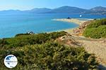 Golden beach Euboea | Marmari Euboea | Greece Photo 14 - Photo GreeceGuide.co.uk