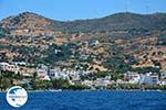 Marmari Euboea | Greece | Photo 31 - Photo GreeceGuide.co.uk