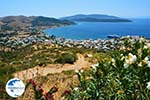 Marmari Euboea | Greece | Photo 52 - Photo GreeceGuide.co.uk