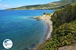 beach near Kokkini   Marmari Euboea   Greece Photo 18 - Photo GreeceGuide.co.uk