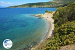 beach near Kokkini | Marmari Euboea | Greece Photo 19 - Photo GreeceGuide.co.uk