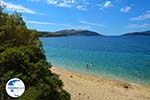 beach Kokkini | Marmari Euboea | Greece Photo 20 - Photo GreeceGuide.co.uk