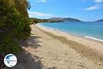 beach Kokkini | Marmari Euboea | Greece Photo 27 - Photo GreeceGuide.co.uk