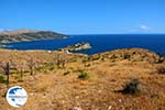 Likorema Euboea | Greece | Photo 30 - Photo GreeceGuide.co.uk