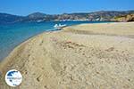 Near Golden beach Euboea | Marmari Euboea | Greece Photo 106 - Photo GreeceGuide.co.uk